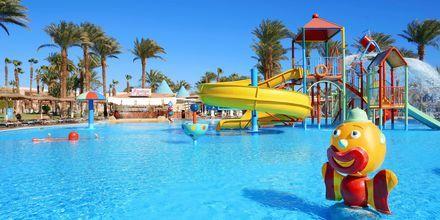 Barnpool på hotell Beach Albatros Resort i Hurghada, Egypten.