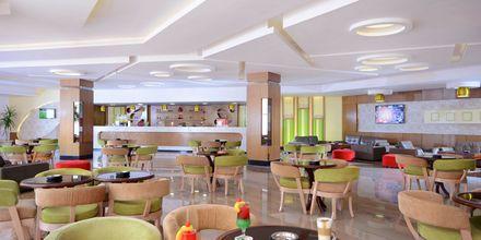 Cappuccino Bar på hotell Beach Albatros Resort i Hurghada, Egypten.
