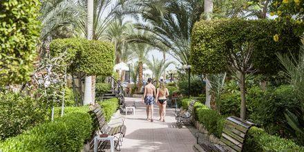 Hotell Bella Vista i Hurghada, Egypten.
