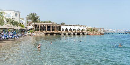 Kristallklart vatten på hotell Bella Vista i Hurghada, Egypten.
