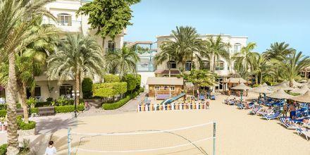 Beach volley på hotell Bella Vista i Hurghada, Egypten.