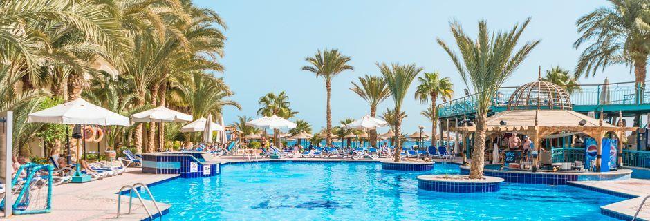 Poolområdet på hotell Bella Vista i Hurghada, Egypten.