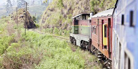 Tåget passerar genom Hikkaduwa och tar dig ut i det fantastiska landskapet.