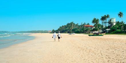 Strand i Bentota på Sri Lanka.
