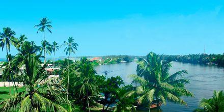 Bentota på södra Sri Lanka.