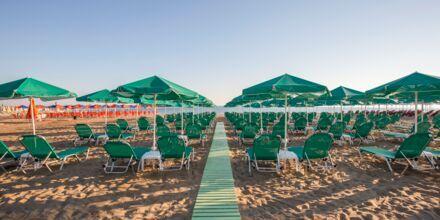 Stranden vid hotell Bio i Rethymnon stad på Kreta.