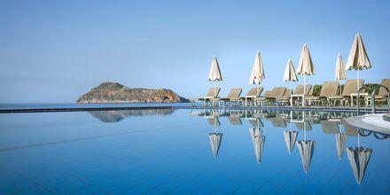 Poolen på hotell Blue Dome i Platanias, Kreta.