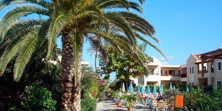 Blue Sea Apartments på Kreta, Grekland.