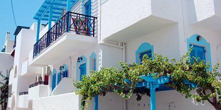 Hotell Blue Sky i Naxos stad, Grekland.
