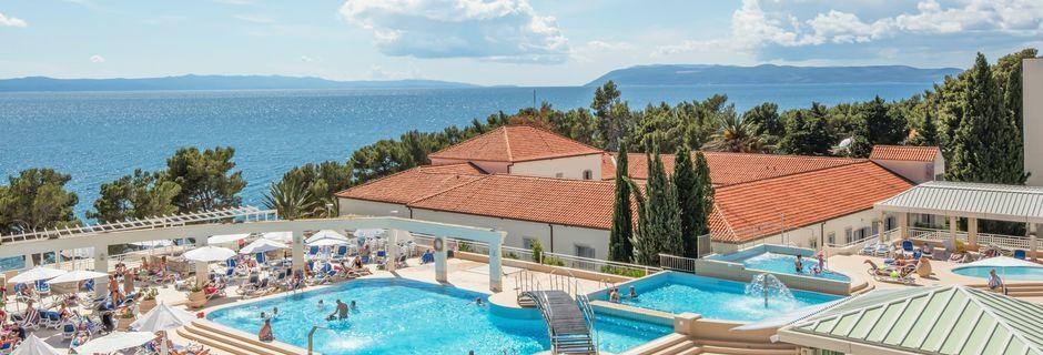 Hotell Bluesun Alga i Tucepi, Kroatien.Hotell Bluesun Alga i Tucepi, Kroatien.