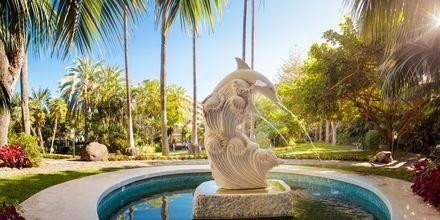 Hotell Botanico i Puerto de la Cruz, Teneriffa.