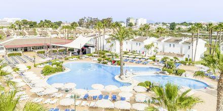 Poolområde på hotell BQ Alcudia Sunvillage på Mallorca, Spanien.