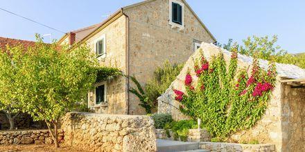 Här får du tid att på egen hand. Ta hyrcykeln till Zlatni Rat och bada vid en av Kroatiens mest kända stränder.