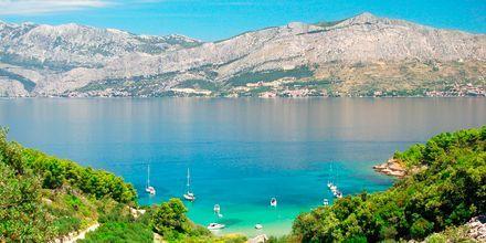 Lovrecina-stranden på Brač, Kroatien.
