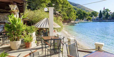 Njut av en god lunch vid stranden i vackra Brac, Kroatien.
