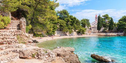 Mysiga vikar med kristallklart vatten i Brac, Kroatien.