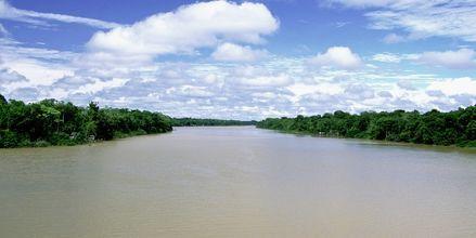 Amazonfloden i Brasilien.