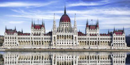 Parlamentet i Budapest är en pampig byggnad.