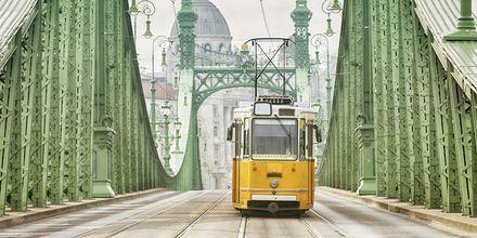 Gula spårvagnar är en av Budapest klassiska symboler.