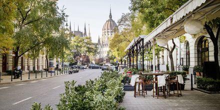 Restauranger finns det gott om i Budapest, Ungern.