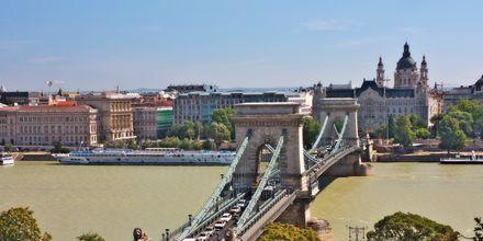 Kedjebron i Budapest går över floden Donau.