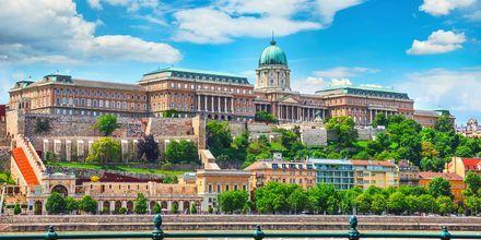Budapests kungliga slott och slottshöjden som det ligger på är skyddat av UNESCO.