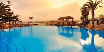 Poolen på hotell Barcelo Castillo Beach Resort på Fuerteventura.