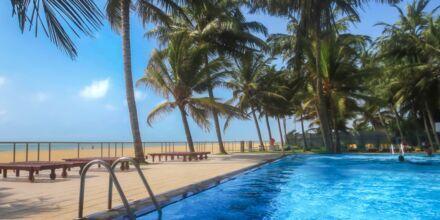 Camelot Beach i Negombo på Sri Lanka.