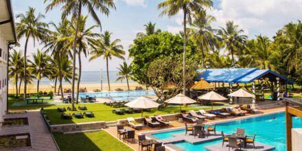 Pool och strand på Camelot beach i Negombo, Sri Lanka.