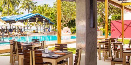 Restaurang på hotell Camelot Beach i Negombo på Sri Lanka.
