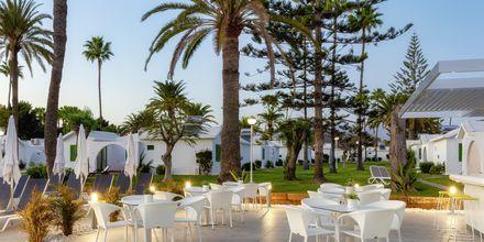 Poolbar på hotell Canary Garden Club i Maspalomas på Gran Canaria.