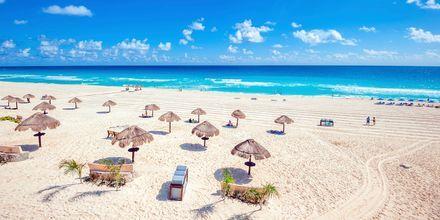 Ljuvlig strand i Cancun, Mexiko.