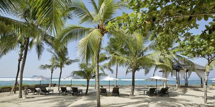 Stranden vid hotell Candi Beach Resort & Spa.
