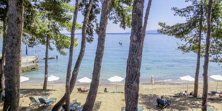 Stranden vid hotell Candia Park Village har fått EU:s blå flagga för rent vatten.