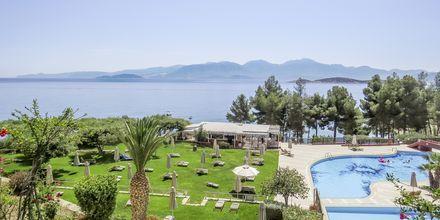 Poolområdet på hotell Candia Park Village i Agios Nikolaos på Kreta.