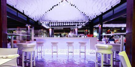 Koi Bar