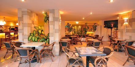 Bar på hotell Carina i Rhodos stad, Grekland.