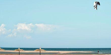 Stranden vid på hotell Casa Cook El Gouna i Egypten.
