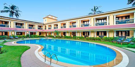 Poolen för deluxerum på hotell Casa de Goa, Indien.