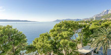 Stranden nedanför hotell Central Beach 9 i Makarska, Kroatien.