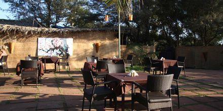 Restaurang på hotell Chalston Beach Resort i Goa, Indien.