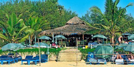 Restaurang och stranden vid hotell Chalston Beach Resort i Goa, Indien.