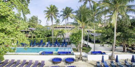 Poolen på Chura Samui Resort på Koh Samui, Thailand.