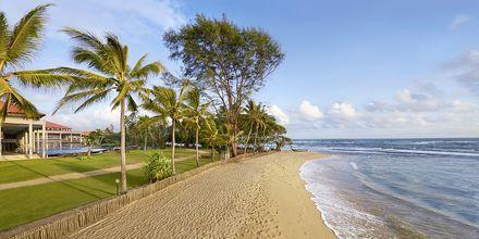 Stranden vid hotell Cinnamon Bey Beruwala i Bentota, på Sri Lanka.