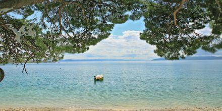 Stranden vid hotell City Beach på Makarska rivieran, Kroatien.
