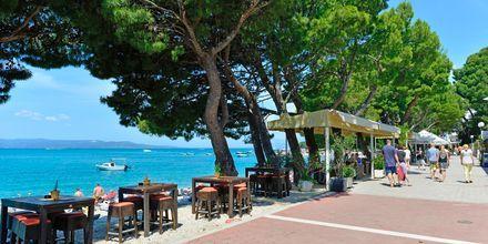 Strandpromenad utanför City Beach på Makarska rivieran, Kroatien.