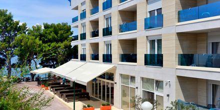 Hotell City Beach på Makarska rivieran, Kroatien.