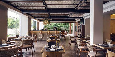 Restaurang på hotell Contessina i Tsilivi, Grekland.