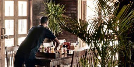 Restaurang på hotell Cook's Club El Gouna i Egypten.