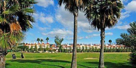 Golfbanan i Maspalomas, Gran Canaria.